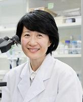 学術委員:藤山 文乃 北海道大学 大学院医学研究院 組織細胞学教室 教授